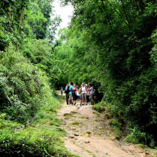 Go-Indochine Trekkingtour with Guide North Vietnam