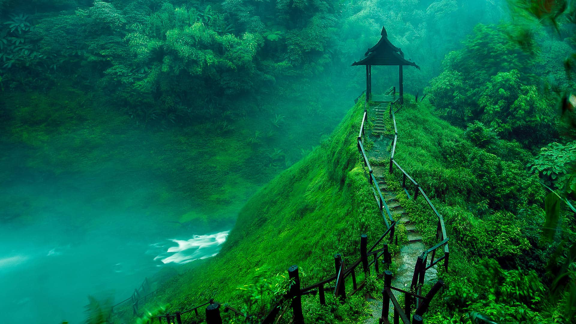 Laos Jungle with wooden path and river