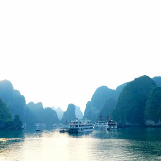 Go-Indochine Halong Bay Cruise 2019