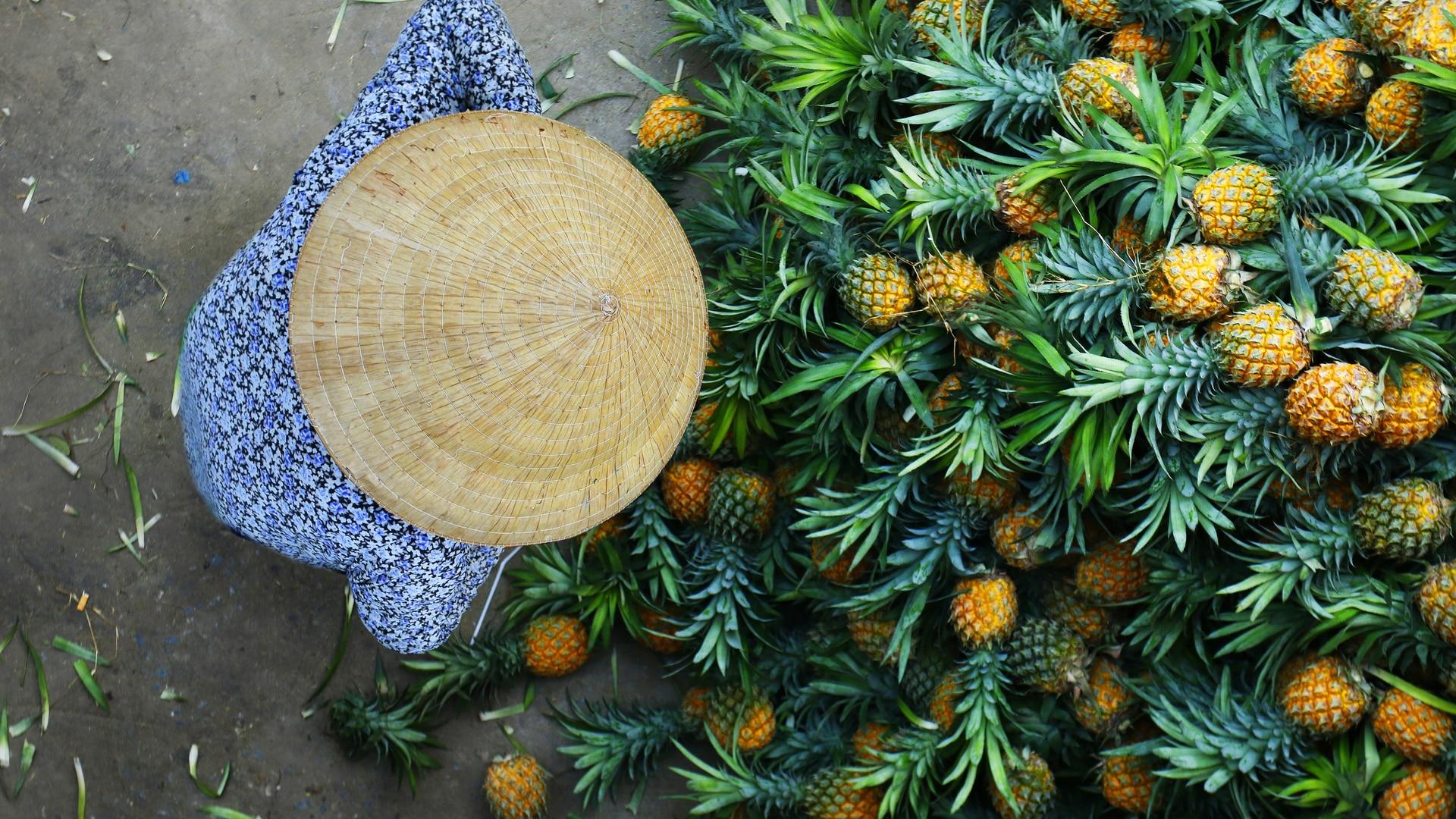 Pineapple Fruit Vendor in Vietnam